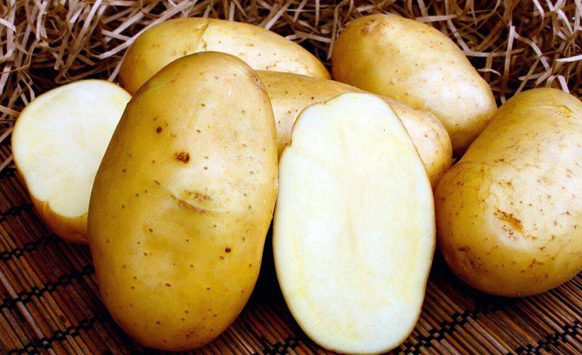 картофель для закрепления цвета