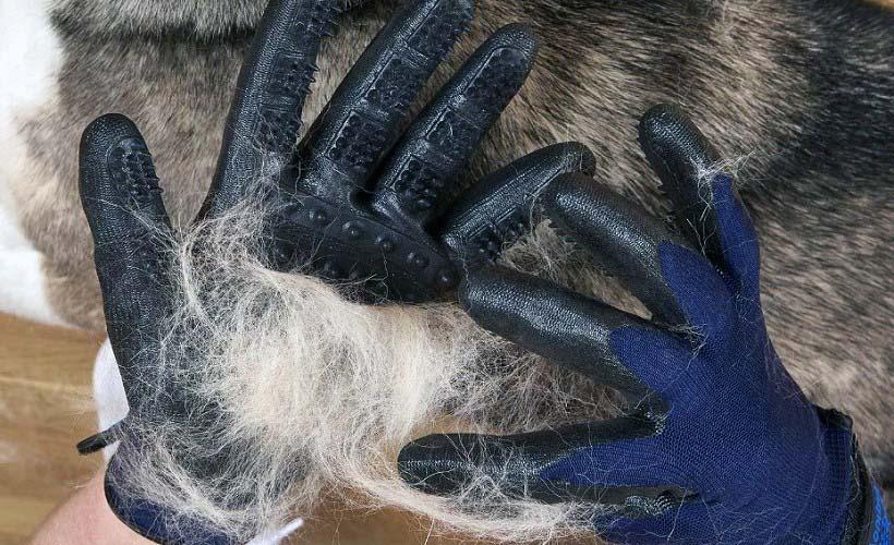 удаление шерсти перчаткой